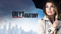 Ellen Pompeo Stars in the long-running hit TV Show Grey's Anatomy