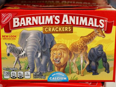 Barnum's Animals Freed For the First Time in 116 Years