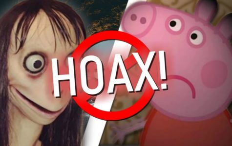 Momo Hoax Exposed